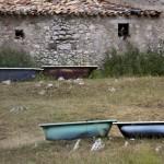 fot. Mirek Mizera