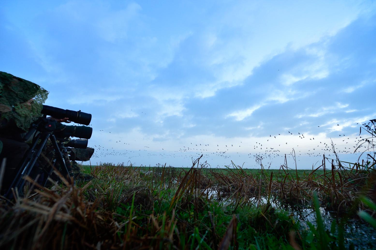 Zaczęło się, migawki poszły w ruch.fot. Piotr Chara