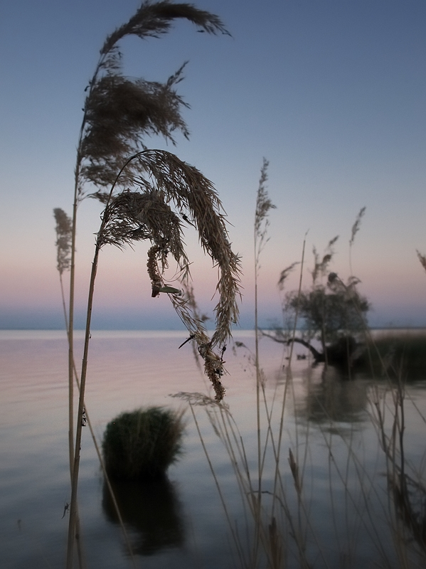 fot. Marta Korza